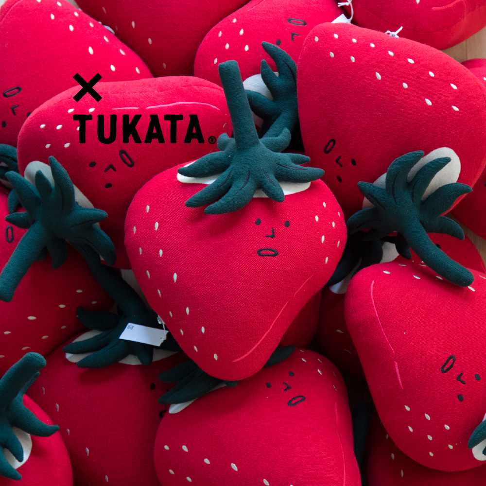 BERRY CUSHION X TUKATA